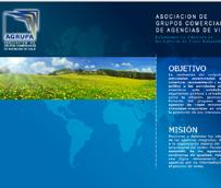 CNC abre expediente sancionador a otros nueve Grupos comerciales de agencias por su relación con Agrupa