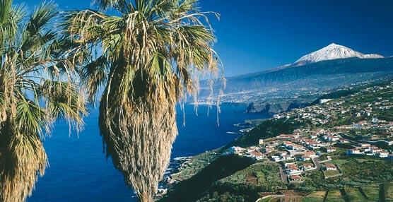 El 55% de los turistas realiza alguna actividad durante su estancia en Tenerife.
