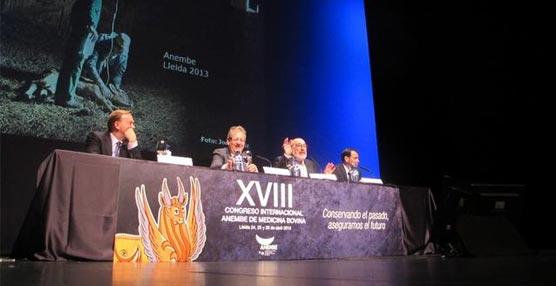 La Llotja de Lleida acoge un congreso de medicina novina al que asisten más de 500 especialistas