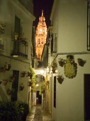 'La Cumbre de Asociaciones es el evento más importante de 2013 para Córdoba', destaca la delegada de Turismo