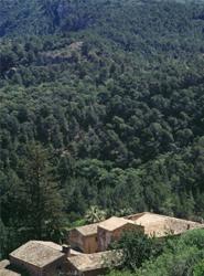 El hotel Cap Rocat inicia una campaña de recogida de fondos por el incendio en la Sierra de la Tramuntana