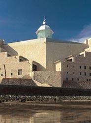 El Palacio de Congresos de Canarias acoge el XVIII Congreso de la Sociedad Española de Parasitología