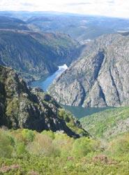 OPC Galicia participa en el foro sectorial para definir el Plan Integral de Turismo de la Comunidad gallega