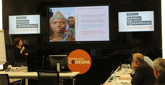 La innovación social y las alianzas público-privadas para el desarrollo, a debate en un foro de CODESPA