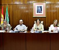Rodríguez defiende el futuro Decreto de Viviendas de Uso Turístico porque integra la actividad en un marco de legalidad