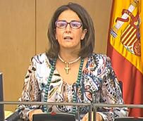 Borrego defiende que los presupuestos de 2015 'dan prioridad a la inversión real' para fomentar la competitividad del destino