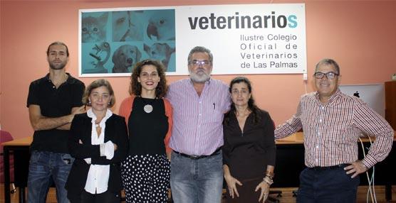 El Palacio de Congresos de Canarias gana la candidatura para acoger el Congreso Anual de la Sociedad Europea de Oncología Veterinaria