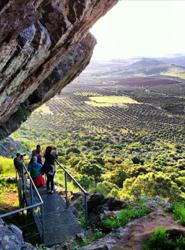 Las rutas del vino españolas superan los dos millones de visitantes y generan más de 40 millones de euros