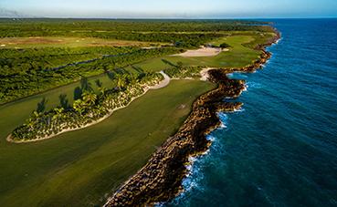 Grupo Piñero planta 15.000 árboles en México y República Dominicana