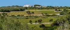 Torralbenc, elegido 'Mejor hotel enoturístico de España'