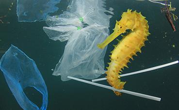 Paradores elimina las pajitas de plástico de sus establecimientos