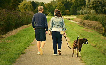 El 55% de los españoles evitan viajar con su mascota por las dificultades que conlleva