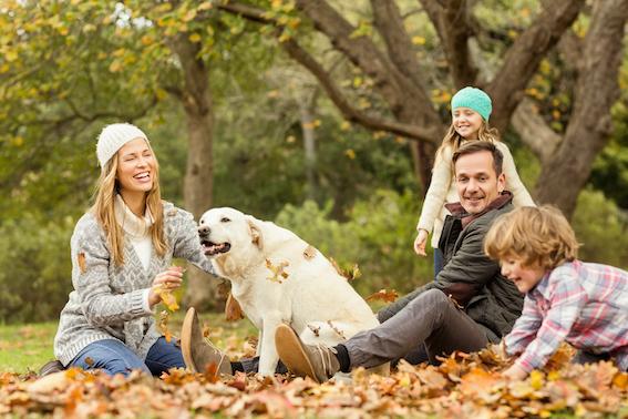 OYO Vacation Homes adquiere las casas vacacionales de TUI