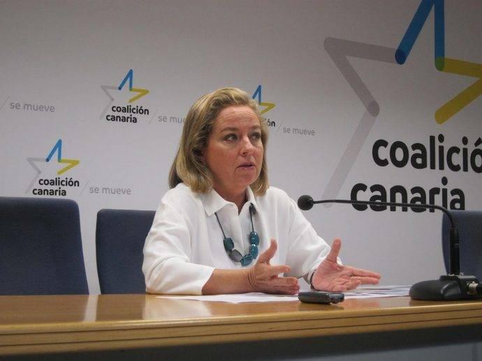 CC y Ciudadanos consiguen ampliar los ERTE