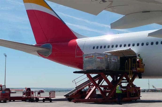 Iberia modifica su política de equipajes especiales