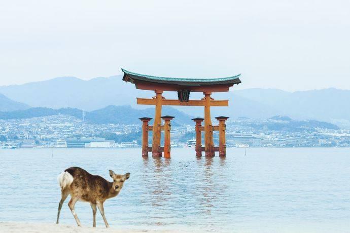 Japón crea una guía de experiencias para adentrarse en el país