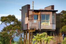 Hapuku Lodge Tree House.