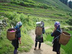 FiturNext busca iniciativas proigualdad de género y empoderamiento femenino para su reto 2021