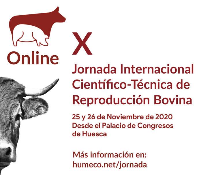 El Palacio de Congresos oscense acogerá una Jornada Internacional Científico-Técnica