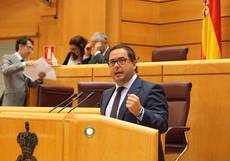El portavoz de Turismo del PP en el Senado, Agustín Almodóbar.