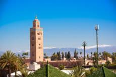 CEAV celebrará sus jornadas técnicas en Marrakech