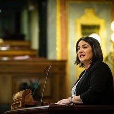 La diputada de Ciudadanos en el Congreso, Mari Carmen Martínez.