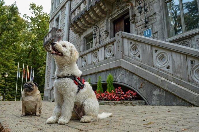Paradores amplía los establecimientos que admiten mascotas