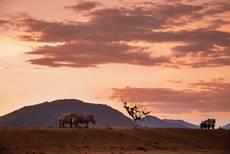 Sudáfrica impulsa su Turismo más allá de los safaris