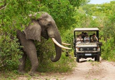 OMT y Atrevia impulsarán el Turismo en África