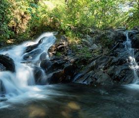 Ávoris fija Costa Rica como destino estrella para el verano