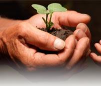 AZ Catering se compromete con la sostenibilidad en los eventos