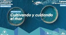 Evento biodirectos para cuidar -y cultivar- el mar