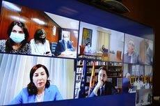 Imagen de la reunión telemática.