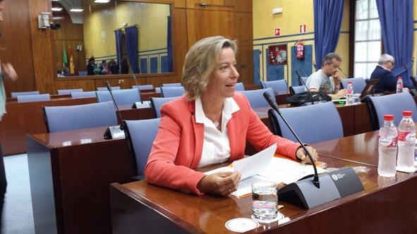 Nuevo paso para el Palacio Congresos de Córdoba en el Parlamento