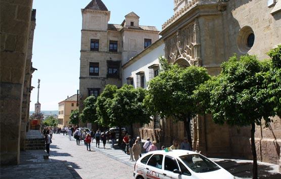 El Palacio de Congresos de Córdoba cumple un año con más de 110 eventos