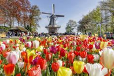 Fluviales especiales de CroisiEurope para Semana Santa
