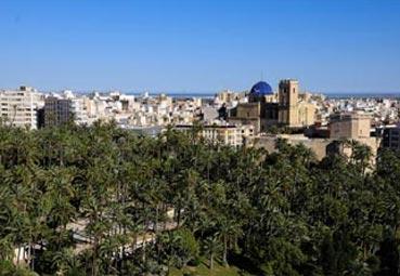 Los empresarios de Elche no quieren el palacio en Carrús