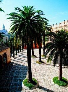 El Patio de Armas del Alcázar de Jerez.