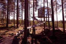 Hotel Tree en Suecia, con habitaciones en árboles