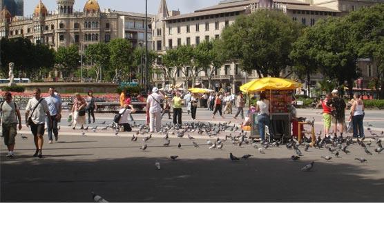 El plan de apoyo al Turismo es 'insuficiente' para las agencias de viajes