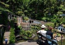 Madeira crea un corredor para turistas vacunados