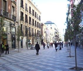 Madrid avisa: 'Necesitamos ayudas para el Sector'