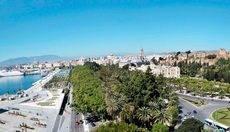 Dit Gestión celebra en Málaga su primera convención