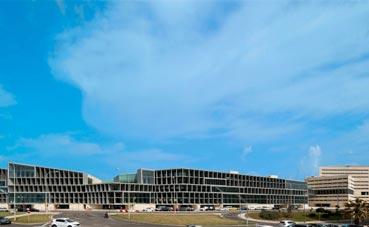 65 personas ya trabajan en el Palacio de Palma