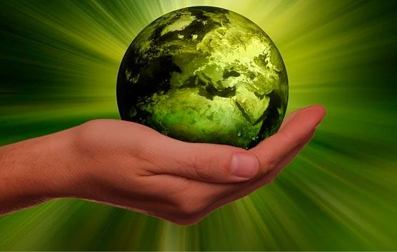 La sostenibilidad será aún más fuerte en Sector tras la pandemia del Covid-19