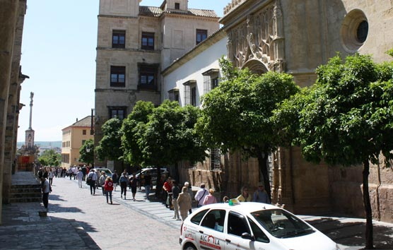 El Palacio de Córdoba sigue trabajando