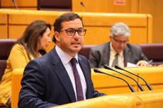 El portavoz de Turismo en el Senado, Agustín Almodóbar.