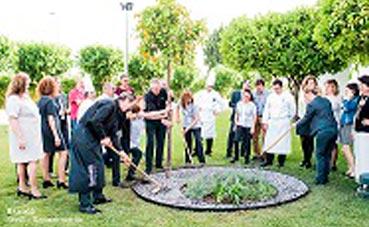 Barceló Sevilla Renacimiento crea un jardín de eventos