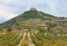La Denominación de Origen Rioja continúa su apuesta por el Sector MICE