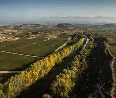 La Denominación de Origen Rioja apuesta por el Turismo de Reuniones